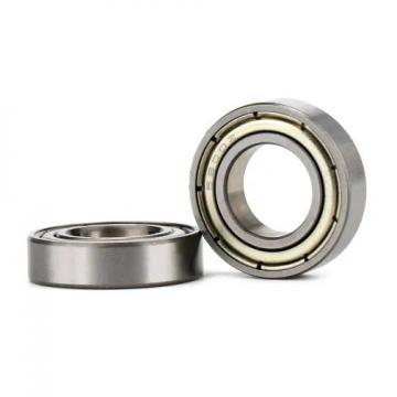 55 mm x 120 mm x 43 mm  NBS SL192311 cylindrical roller bearings